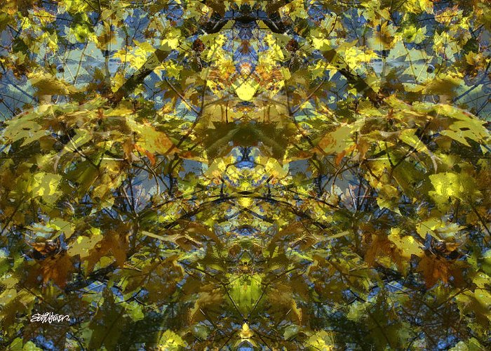 Golden Rorschach Greeting Card featuring the photograph Golden Rorschach by Seth Weaver