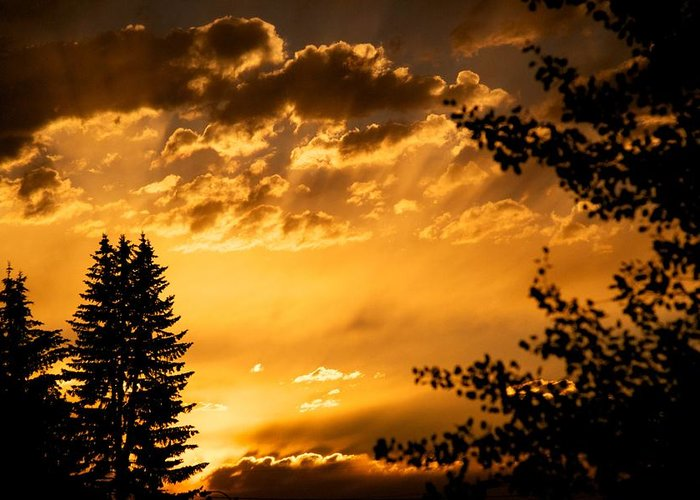 Sunset Greeting Card featuring the photograph Golden Sky 2 by Kevin Bone