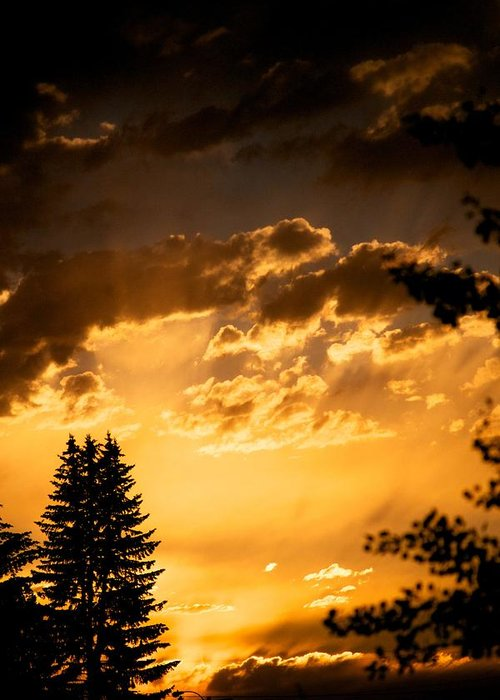 Sunset Greeting Card featuring the photograph Golden Sky by Kevin Bone