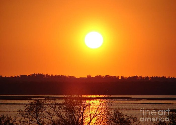 Sunset Greeting Card featuring the photograph Golden Sunset by Ronald Tseng