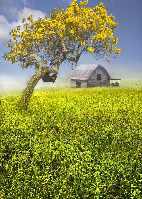 Appalachia Greeting Card featuring the photograph Good Morning Spring by Debra and Dave Vanderlaan