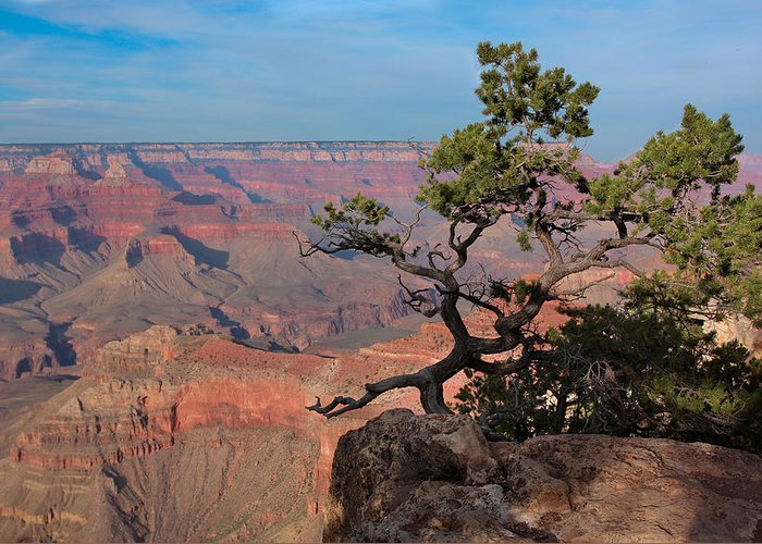 Landscape Greeting Card featuring the photograph Grand Canyon by Olga Vlasenko