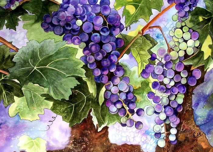 Grapes Greeting Card featuring the painting Grape Vines by Karen Casciani