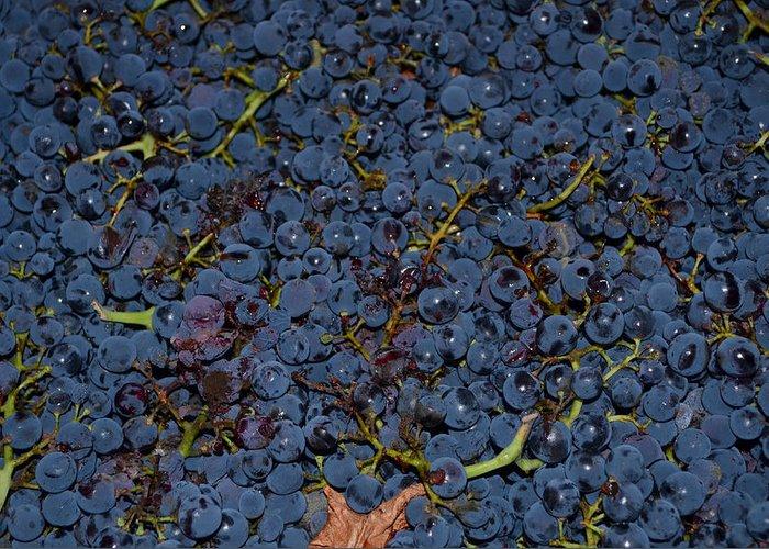 Grapes Greeting Card featuring the photograph Grapes by Barbara Walsh