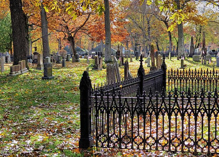 Graveyard Greeting Card featuring the photograph Gravestones by Janice Drew