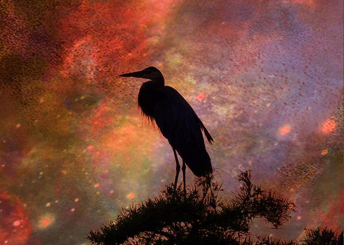 J Larry Walker Greeting Card featuring the digital art Great Blue Heron Viewing The Cosmos by J Larry Walker