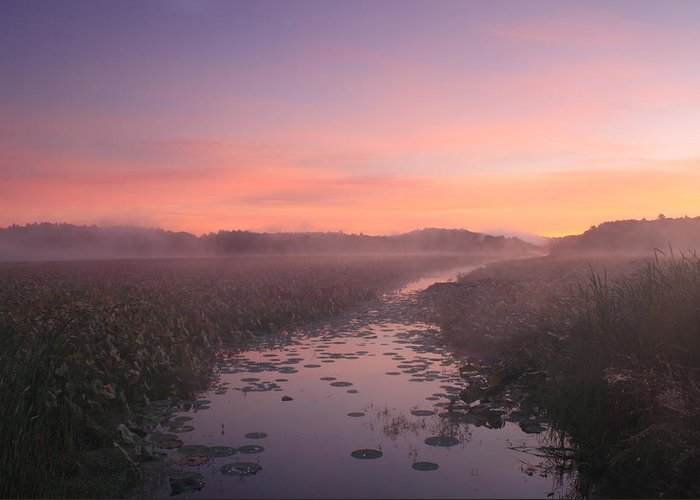 Concord Greeting Card featuring the photograph Great Meadows National Wildlife Refuge Dawn by John Burk