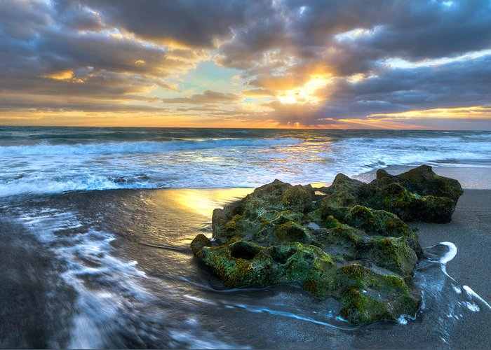 Blowing Rocks Greeting Card featuring the photograph Green And Gold by Debra and Dave Vanderlaan