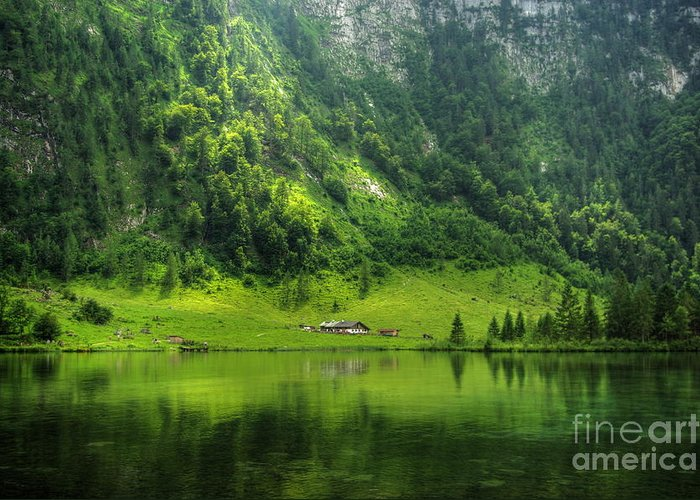 Lake Greeting Card featuring the photograph Green Reflections by Bela Torok