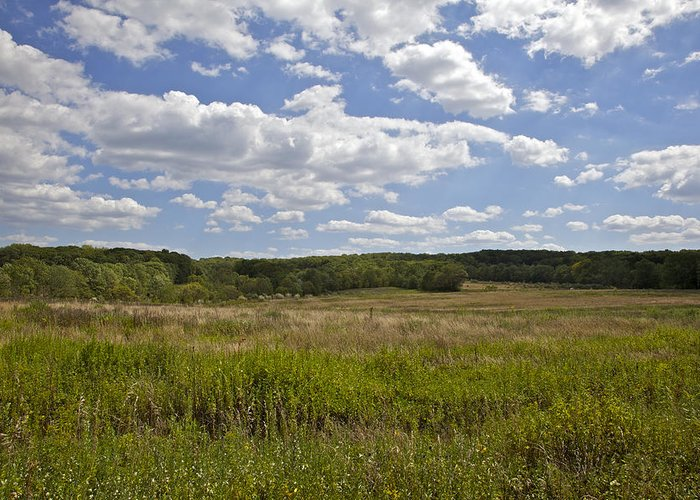 Bunker Hill Greeting Card featuring the photograph Griggstown Native Grassland Preserve by David Letts