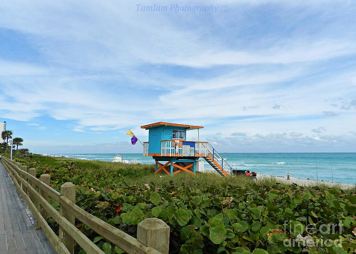 Lifeguard Greeting Card featuring the photograph Guardians by Tammy Chesney