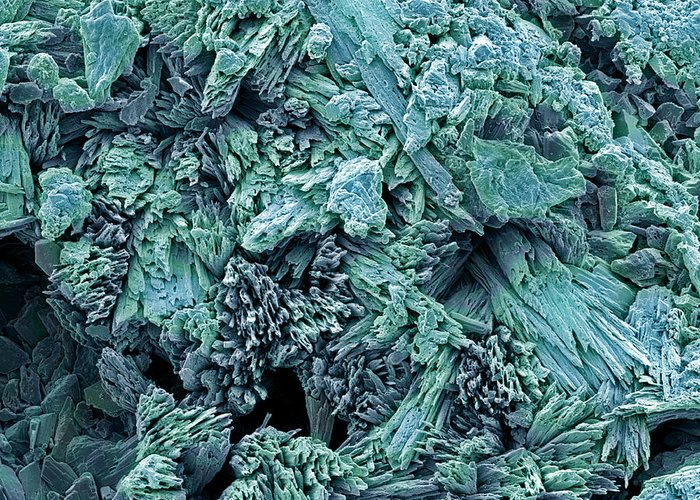 Calcium Sulphate Dihydrate Greeting Card featuring the photograph Gypsum Crystals, Sem by Steve Gschmeissner