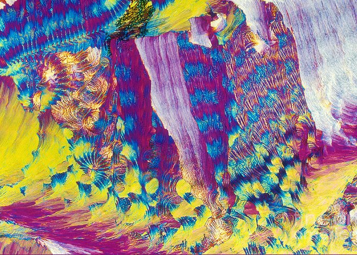 Polarized Light Micrograph Greeting Card featuring the photograph H-proline by Michael W. Davidson