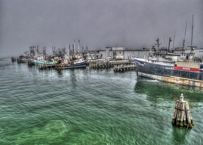 Photography Greeting Card featuring the photograph Harbor Dawn by Paul Wear
