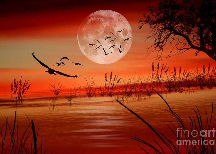 Sunset Greeting Card featuring the digital art Harvest Moon by Erica Hanel