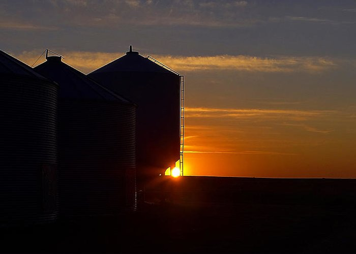 Sunrise Greeting Card featuring the photograph Harvest Sunrise by Blair Wainman