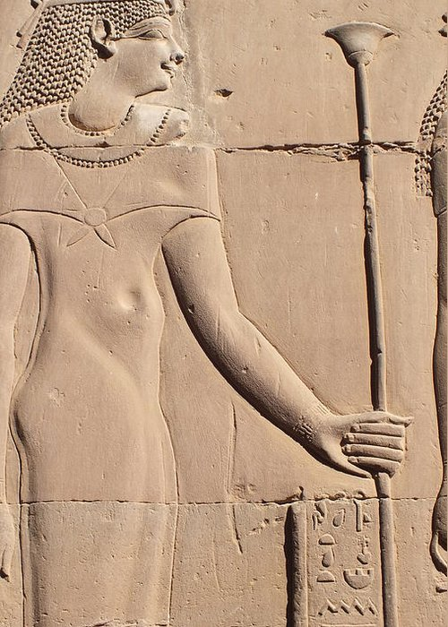 Hathor Greeting Card featuring the photograph Hathor by Emma Manners