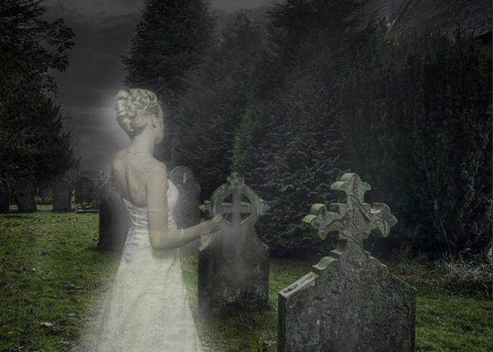Haunted Greeting Card featuring the photograph Haunting by Amanda Elwell