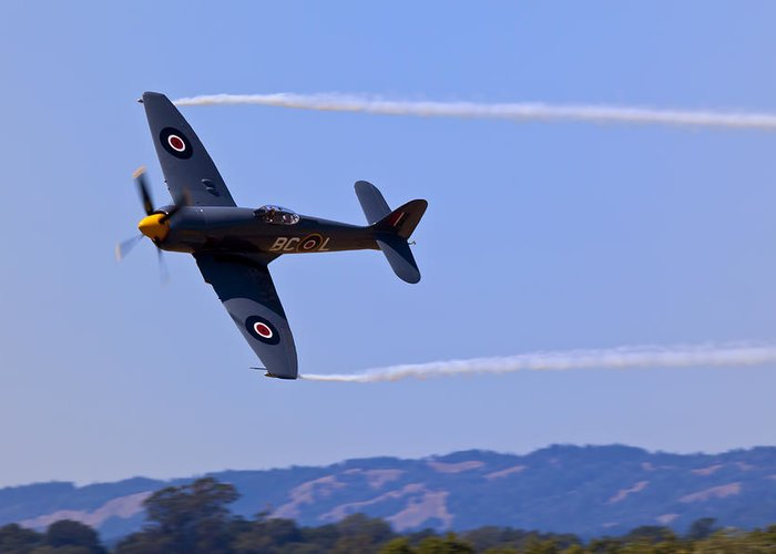 Hawker Sea Fury Greeting Card featuring the photograph Hawker Sea Fury by Garry Gay