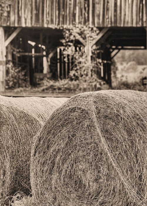 Hay Bale Greeting Card featuring the photograph Hay Bw by JC Findley