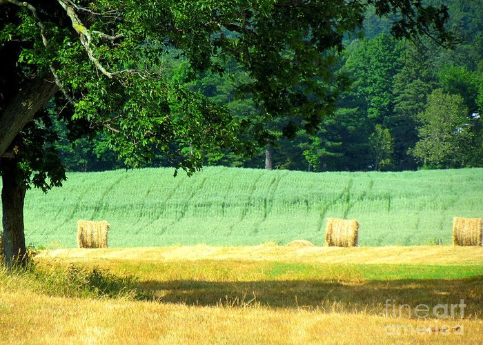 Hay Greeting Card featuring the glass art Hay Landscape by France Laliberte