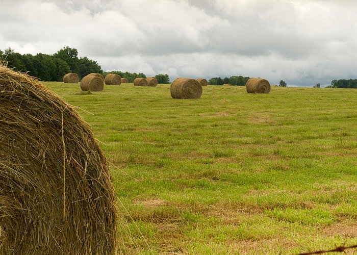 Haybales Greeting Card featuring the photograph Haybales In Field On Stormy Day by Douglas Barnett