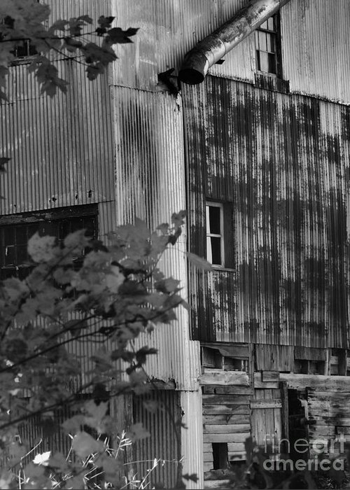 Old Mill Greeting Card featuring the photograph Hearns Feed Mill by Tamera James