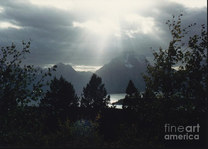 Light Rays Greeting Card featuring the photograph Heavenly Rays by Barbara Plattenburg