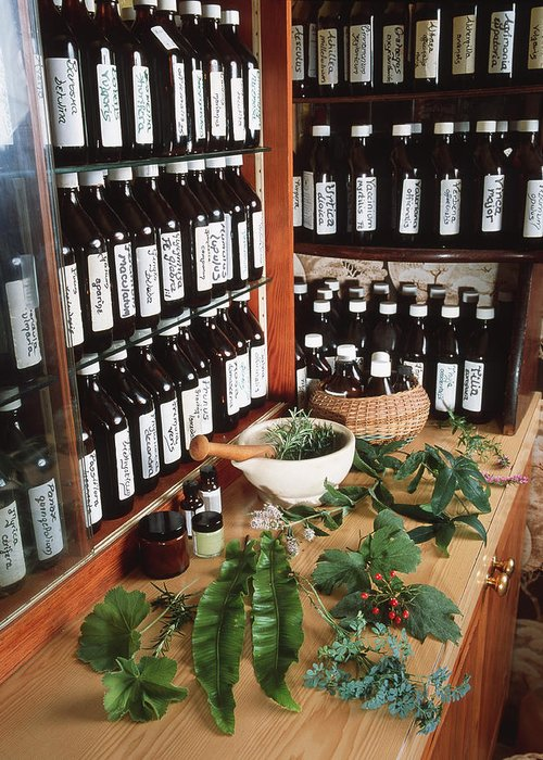 Medicine Greeting Card featuring the photograph Herbal Pharmacy by Tek Image