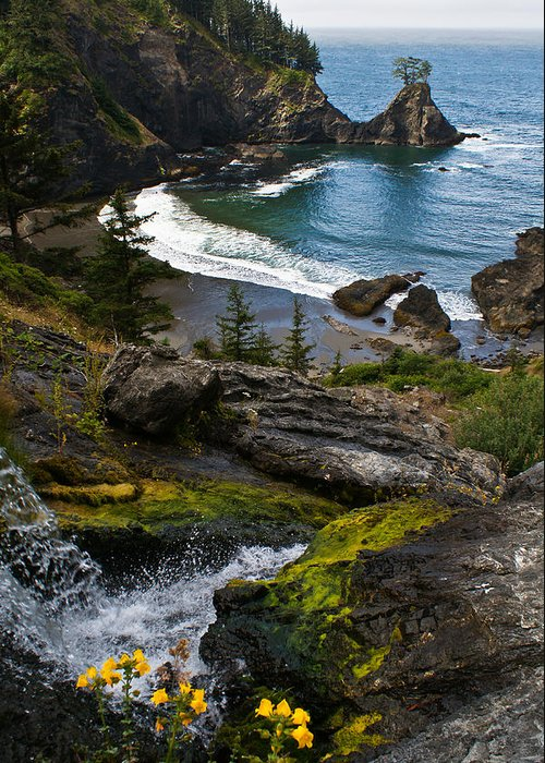 Oregon Greeting Card featuring the photograph Hidden Cove by Jake Johnson