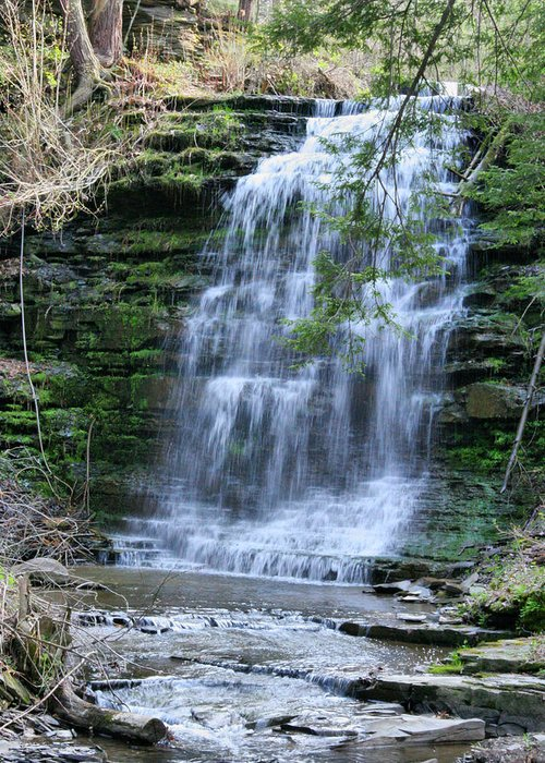 Waterrfall Greeting Card featuring the photograph Hidden Falls by Paul Smith-Keitley