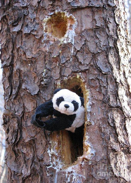 Panda Baby Greeting Card featuring the photograph Hiding by Ausra Huntington nee Paulauskaite