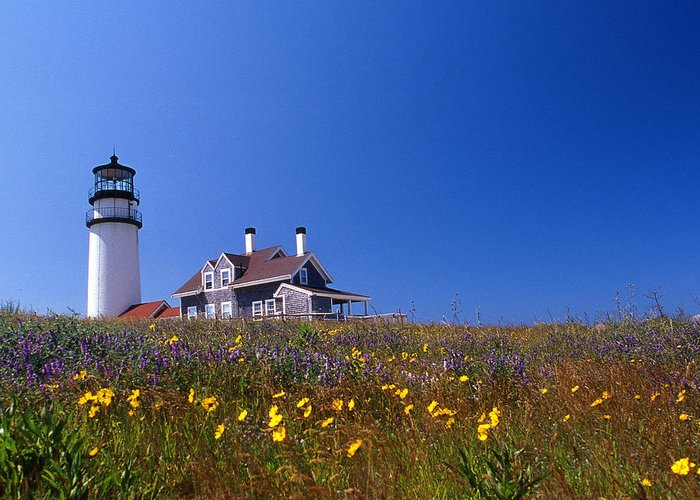 Lighthouse Greeting Card featuring the photograph Highland Lighthouse Cape Cod by Skip Willits