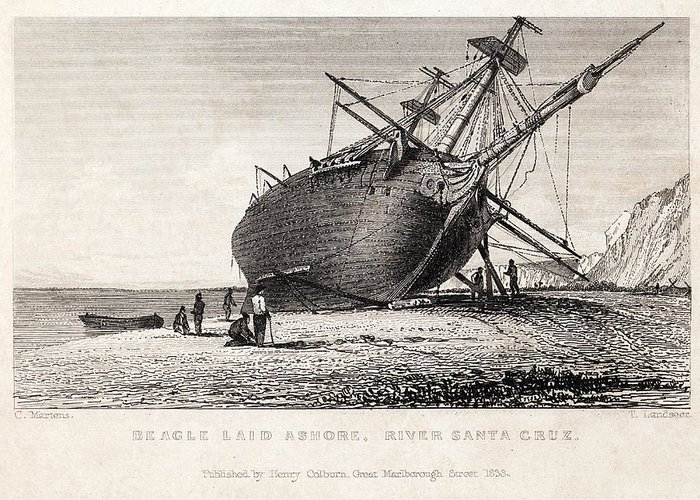 Beagle Greeting Card featuring the photograph Hms Beagle Ship Laid Up Darwin's Voyage by Paul D Stewart