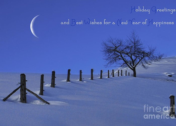 Winter Greeting Card featuring the photograph Holiday Greetings by Sabine Jacobs