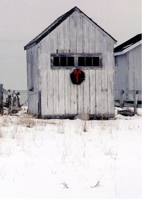 Christmas Greeting Card featuring the photograph Holiday Spirit 2 by Christina Solstad