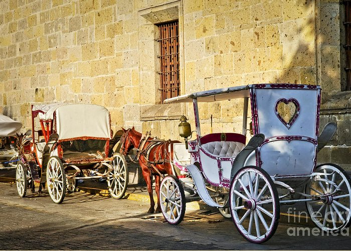 Carriages Greeting Card featuring the photograph Horse Drawn Carriages In Guadalajara by Elena Elisseeva