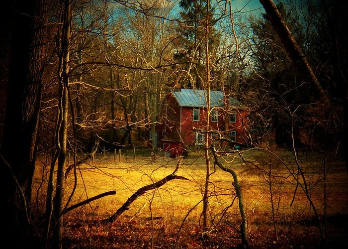 West Virginia Greeting Card featuring the photograph House In The Forest by Joyce Kimble Smith