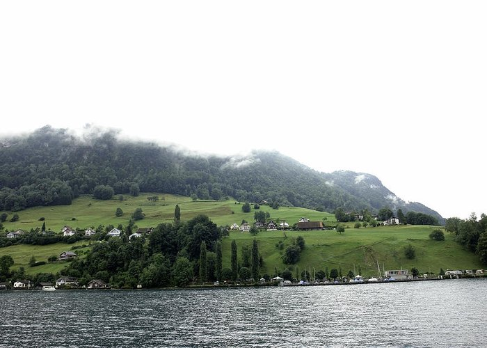 Action Greeting Card featuring the photograph Houses On The Greenery Of The Slope Of A Mountain Next To Lake Lucerne by Ashish Agarwal
