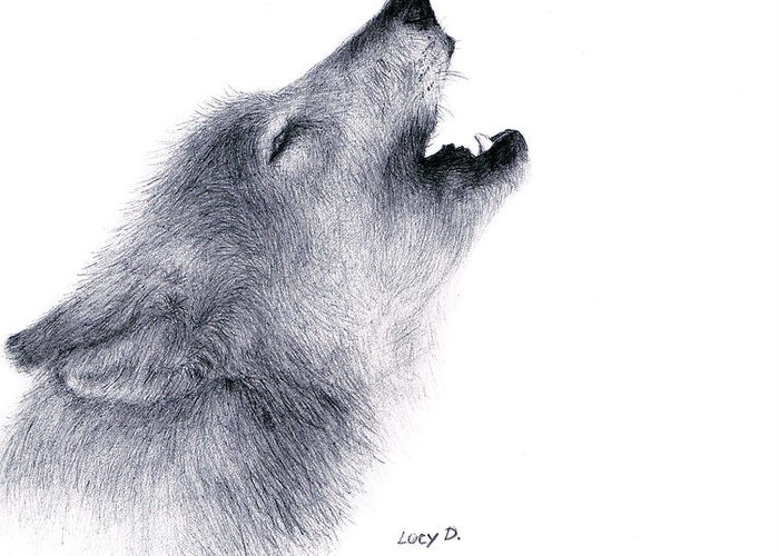 Wolf Greeting Card featuring the drawing Howl by Lucy D