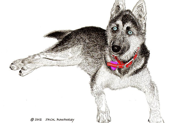 Framed Prints Of Blue Eyed Huskies Greeting Card featuring the painting Husky With Blue Eyes And Red Collar by Jack Pumphrey