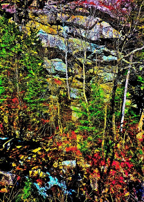 Landscape Greeting Card featuring the photograph Hyper Grafton 11 by George Ramos