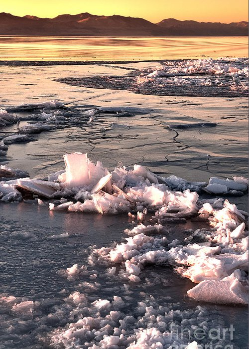 Ice Greeting Card featuring the photograph Ice At Sunset by Earl Nelson