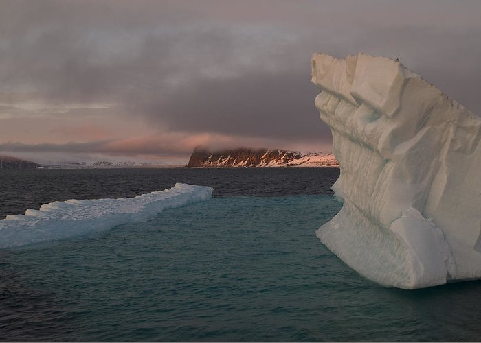 Svalbard Greeting Card featuring the photograph Ice Formations Float In Blue Water by Norbert Rosing