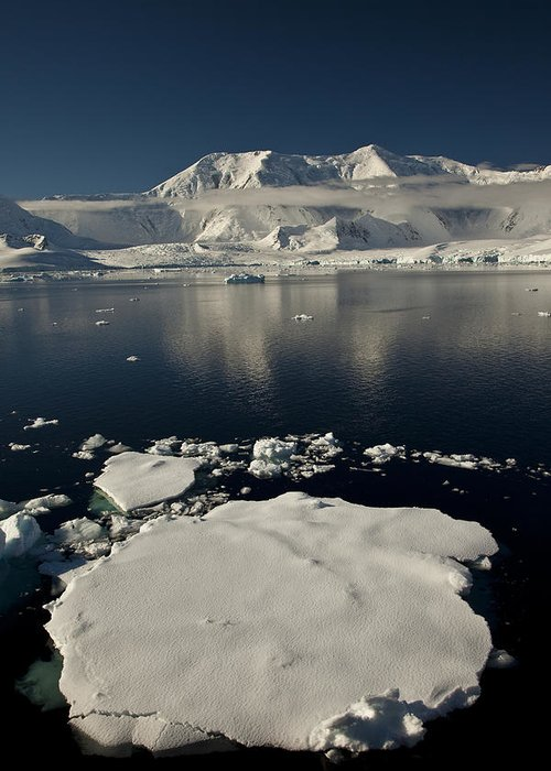 00479578 Greeting Card featuring the photograph Icefloe In The Neumayer Channel by Colin Monteath