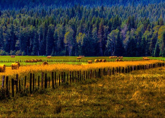 Hay Greeting Card featuring the photograph Idaho Hay Bales by David Patterson