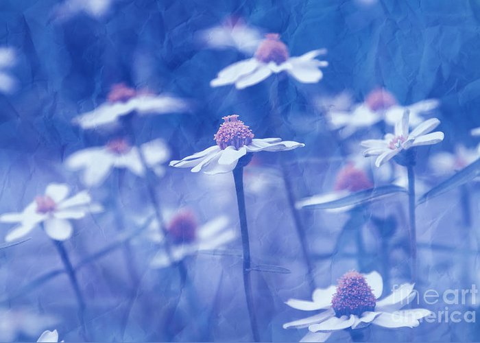 Daisies Greeting Card featuring the photograph Imagine 06ht01 by Variance Collections