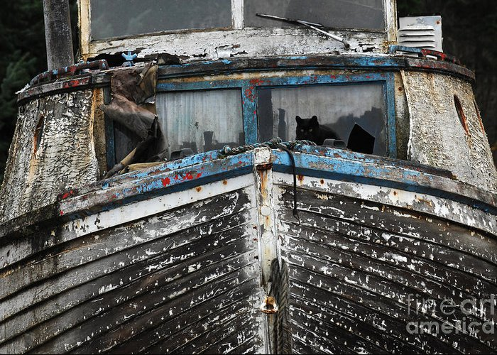 Fishing Boats Greeting Card featuring the photograph In Need Of Work by Bob Christopher