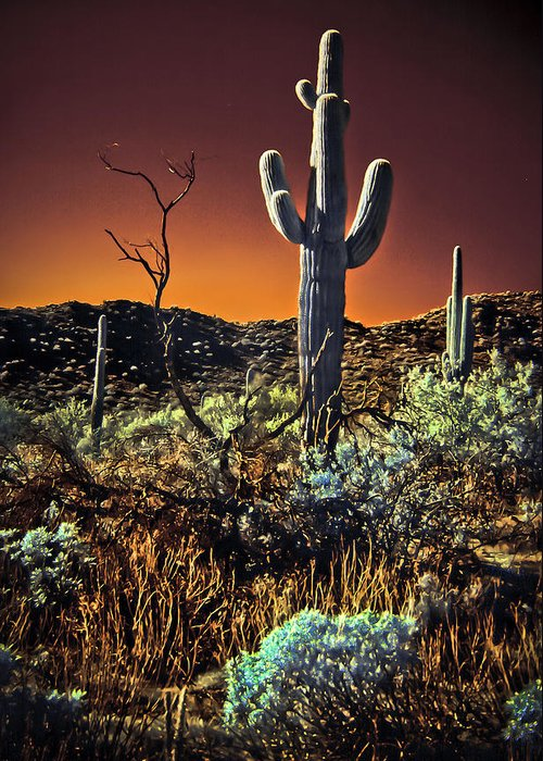 Infrared Greeting Card featuring the photograph Infrared Saguaro 2 by Jim Painter