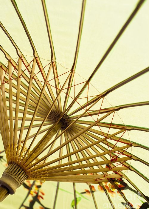 Background Greeting Card featuring the photograph Inside Of Parasol by Sam Bloomberg-rissman